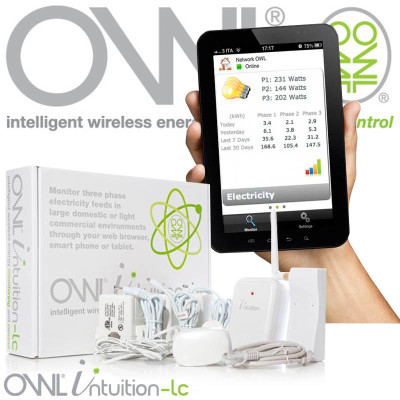 owl_intuition-lc3